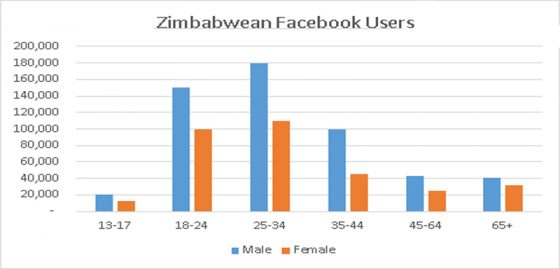 Facebook Zimbabwe user demographics