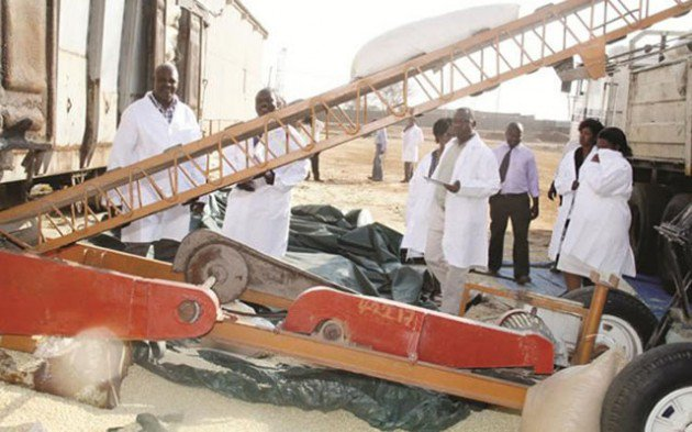 Agric boom spurs economic recovery . . . Sector grows 34pc on bumper harvest