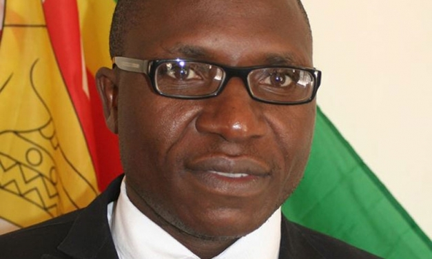 Jacob Ngarivhume Attacks New Zimbabwe Govt