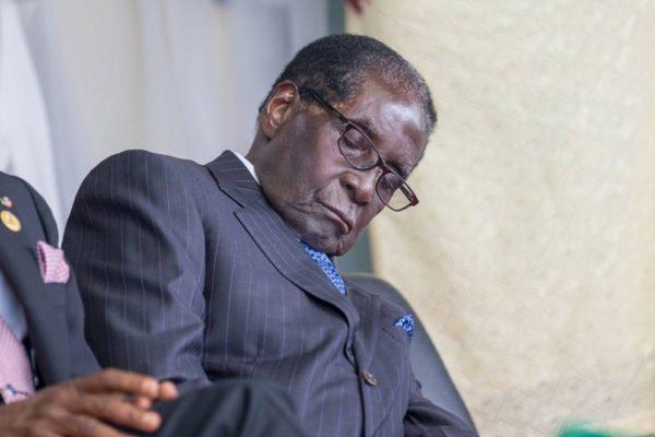 Dethroned Mugabe goes into hibernation