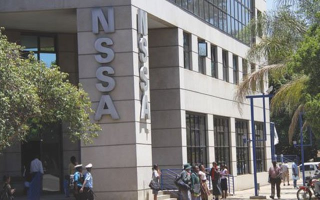 Nssa pursues platinum, lithium investments