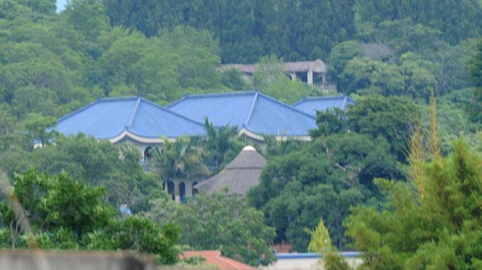 Mugabe family in school land grab