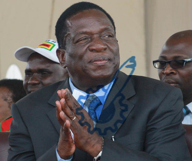 More ED allies axed in Masvingo