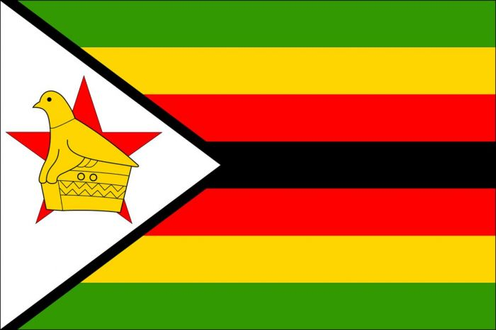 GL – inclusive, free and fair elections in Zimbabwe