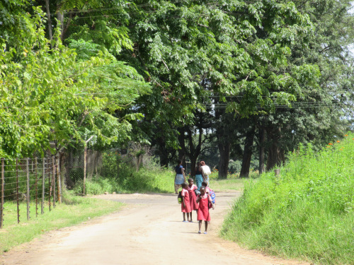Why governance constraints are holding back young people in rural Zimbabwe