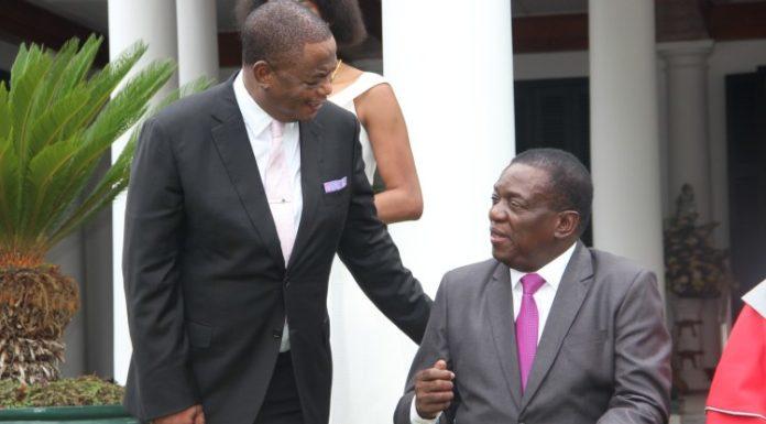 CHIWENGA SECRET FILES: Will He Succeed Mnangagwa?