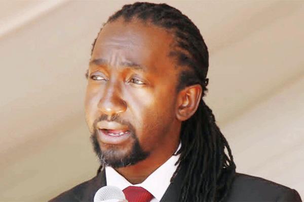Mugabe nephew dares Mnangagwa