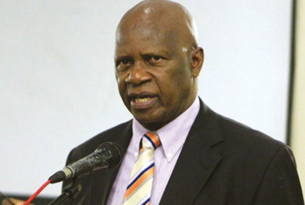 Chinamasa barred from Germany