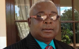 Acting President Mudzuri tours banks, industries in Harare