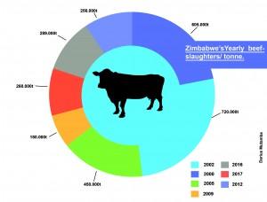 Zim's slaughter stock declines