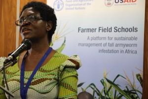 Use of hazardous pesticides rises as armyworm spreads
