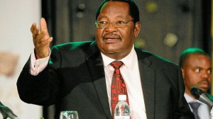 Home Affairs Minister Obert Mpofu