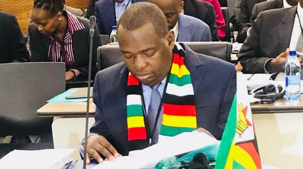 Zimbabwe Working on Logistics for Diaspora Vote, Moyo Says