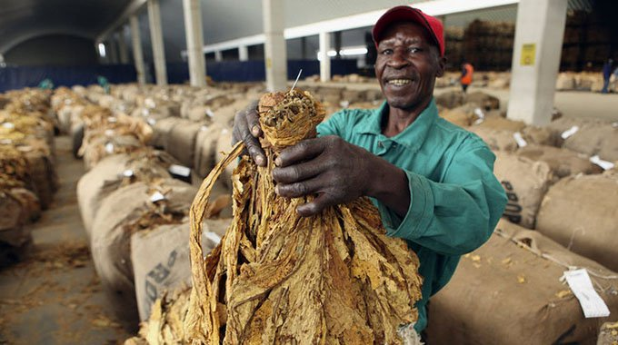 Zim to host tobacco investments indaba