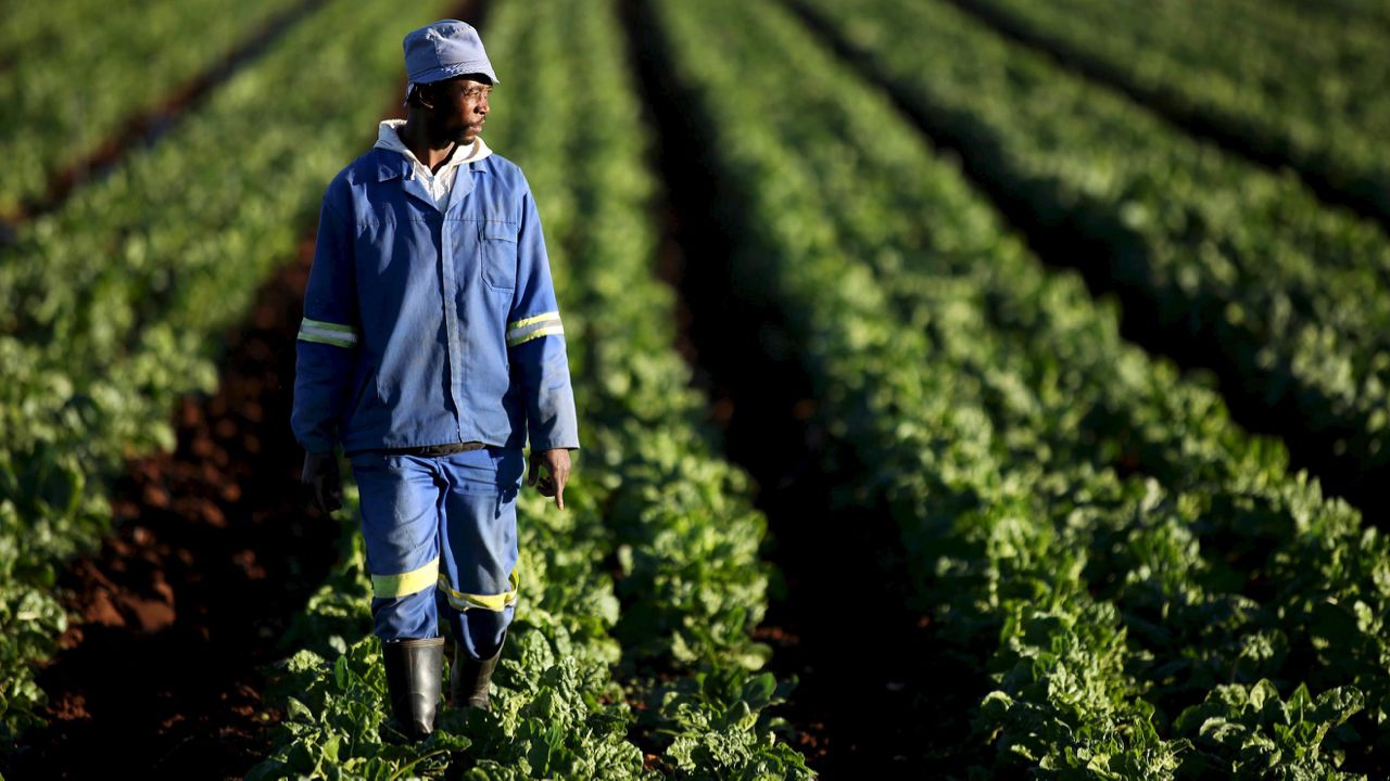 South Africa to take land without compensation, as Zimbabwe backtracks on seizing white farms