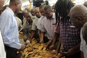 Nyaradzo targets tobacco farmers