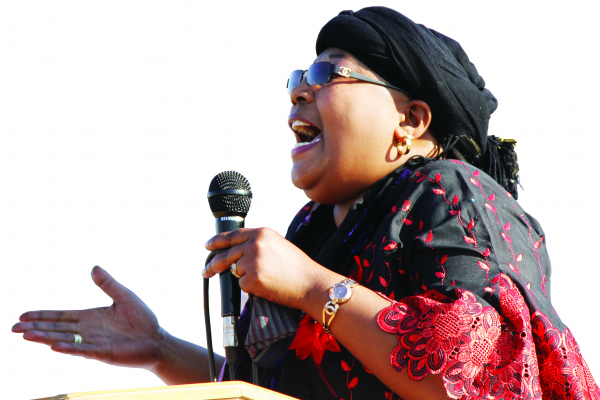 Khupe party to select candidates in 2 weeks