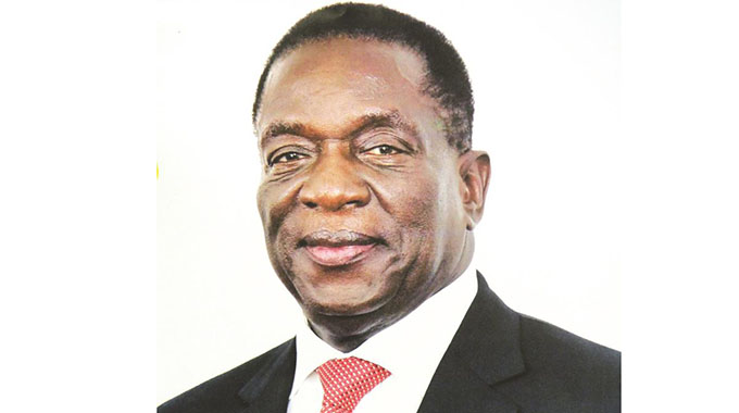 Zim elections 2018: An unfolding novelty . . . 'Experience, depth and state incumbency will trump youthfulness'