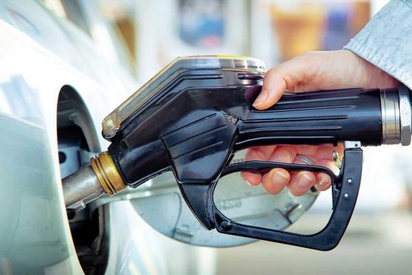 Bulk fuel imports increase