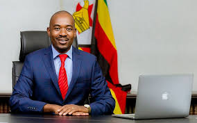Chamisa or ED: It's the economy stupid