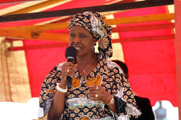 Grace VP dream wrecks MDC Alliance-NPF coalition talks