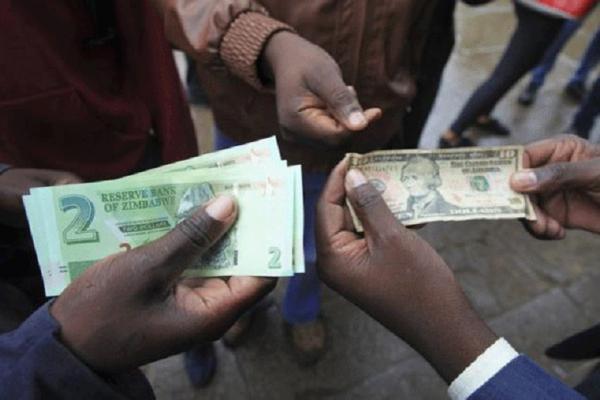 'Forex dealers backbone of economy'
