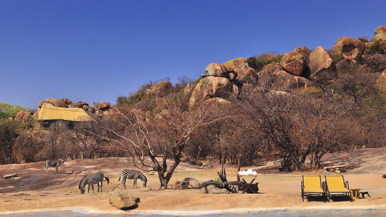Zonkeys and rhinos make Zimbabwe a magical place to visit
