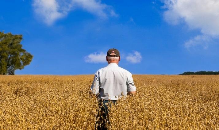 Land reform irreversible: ED