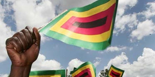 Zanu PF activists accused of attacking opposition supporter