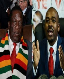 Zimbabwe: ED Plots Chamisa Bait, Top Government Official Reveals the Details