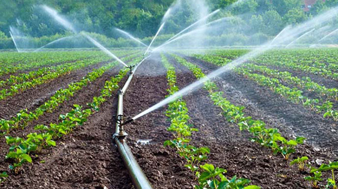 Invest in irrigation to ensure food security