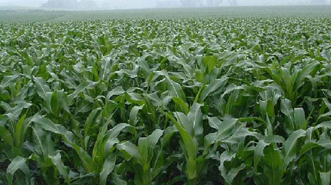 Agric Trust disburses $87m to agric