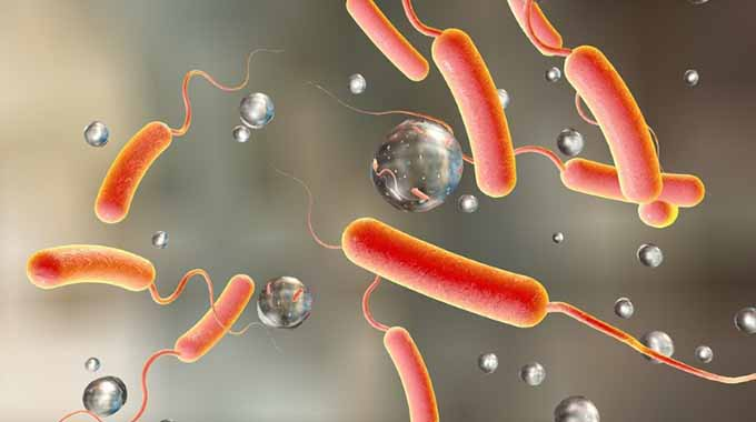 3 suspected cholera deaths in Murehwa