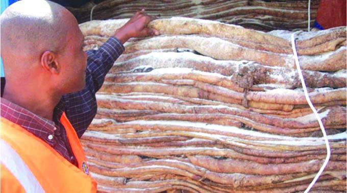 Export relief for raw hide merchants
