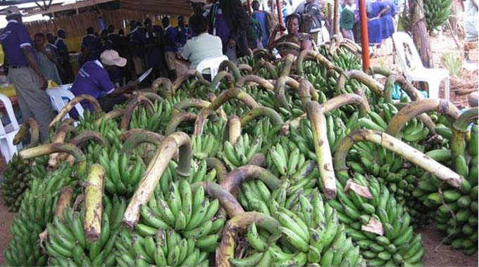 Govt grants nod to bananas deal