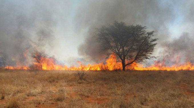 Veld fire awareness for farmers