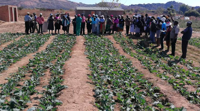 HIT launches new irrigation system