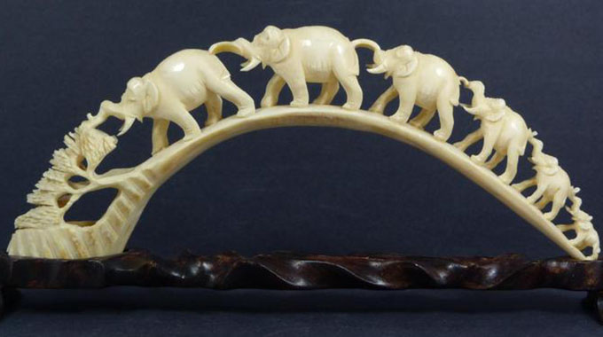 Vote-buying mars Africa's quest for ivory trade