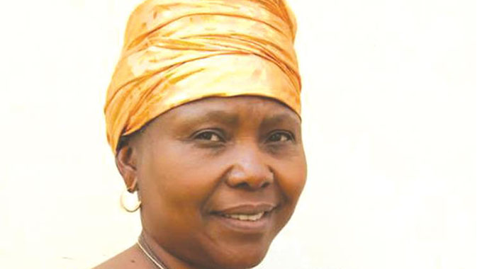 Zim leads Sadc observer mission in Moza elections