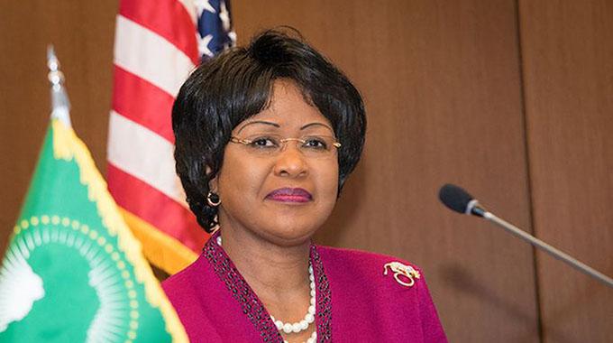 AU under fire over Zim envoy