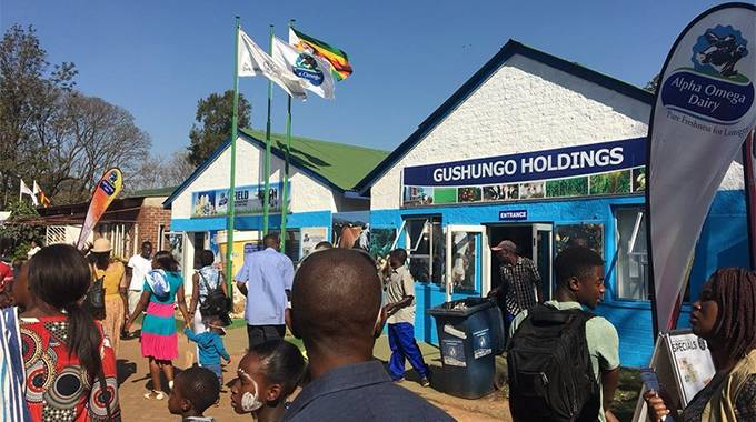 JUST IN: Gushungo dairy bomber seeks redress