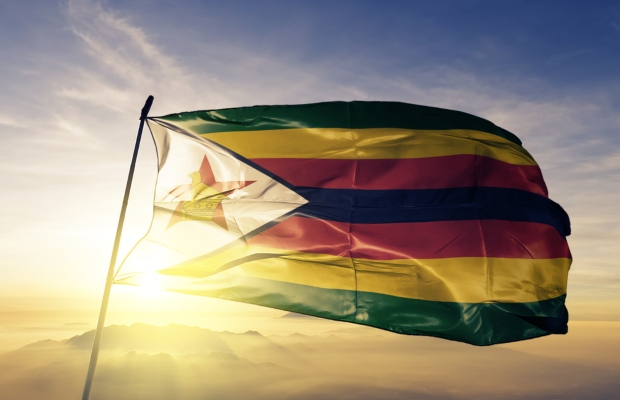Zimbabwe should simplify its IP laws, says government official