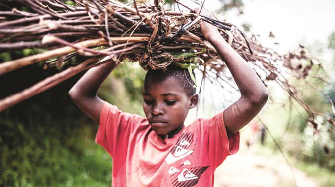 Child labour within the home