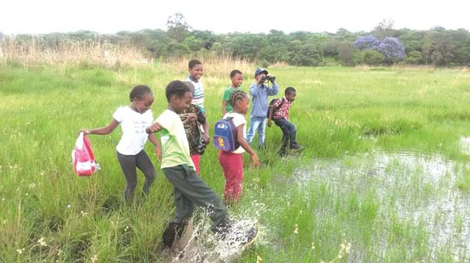 Protection of urban wetlands crucial