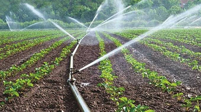 Agric recovery plan targets 5 000 irrigation farmers