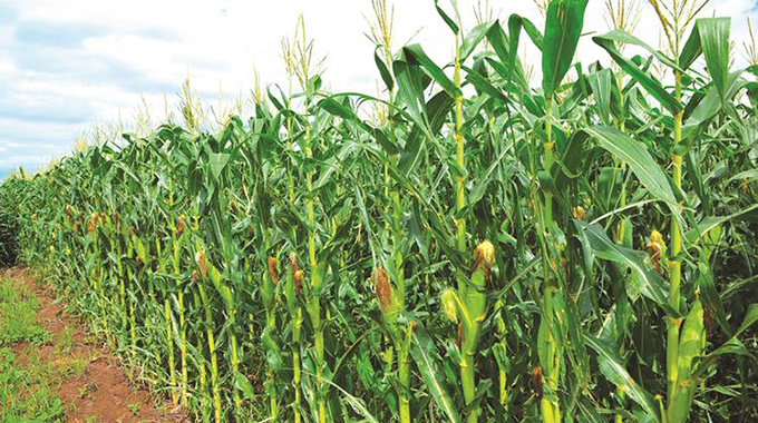 Editorial Comment: Proactive action needed to boost agric production