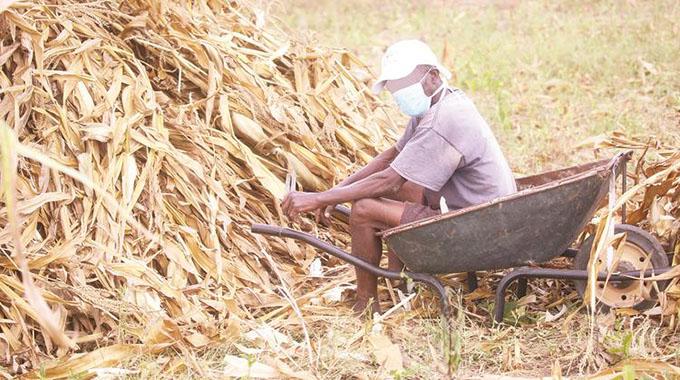 Covid-19 death: Mhondoro villagers in denial