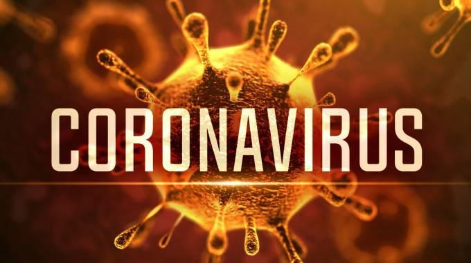 Fighting coronavirus as one family