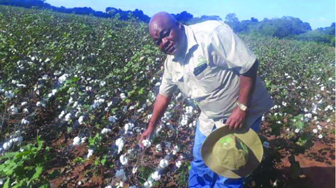 Cotton farmers press for more forex payments thumbnail