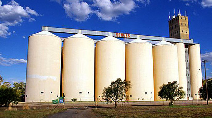 JUST IN: Farmers deliver more than 70 000 tonnes of grain